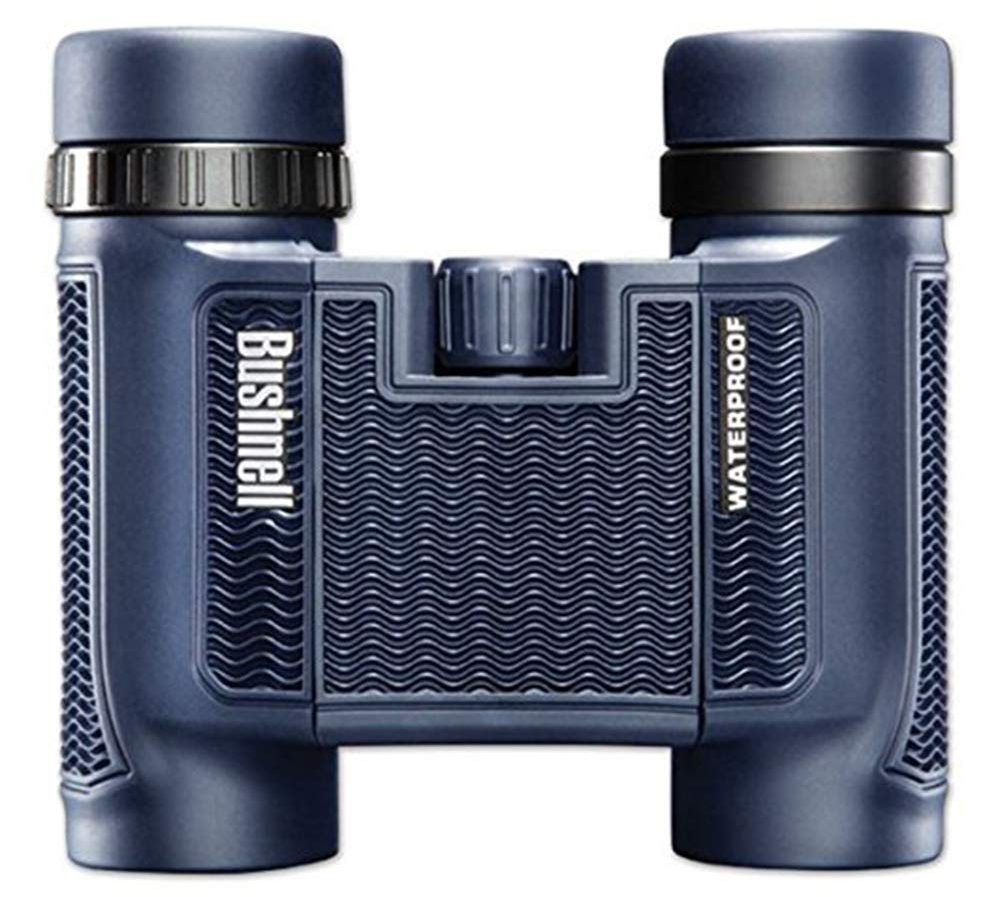 Bushnell 138005 H2O Waterproof and Fogproof Compact Roof Prism Binocular, 8 x 25-mm, Black