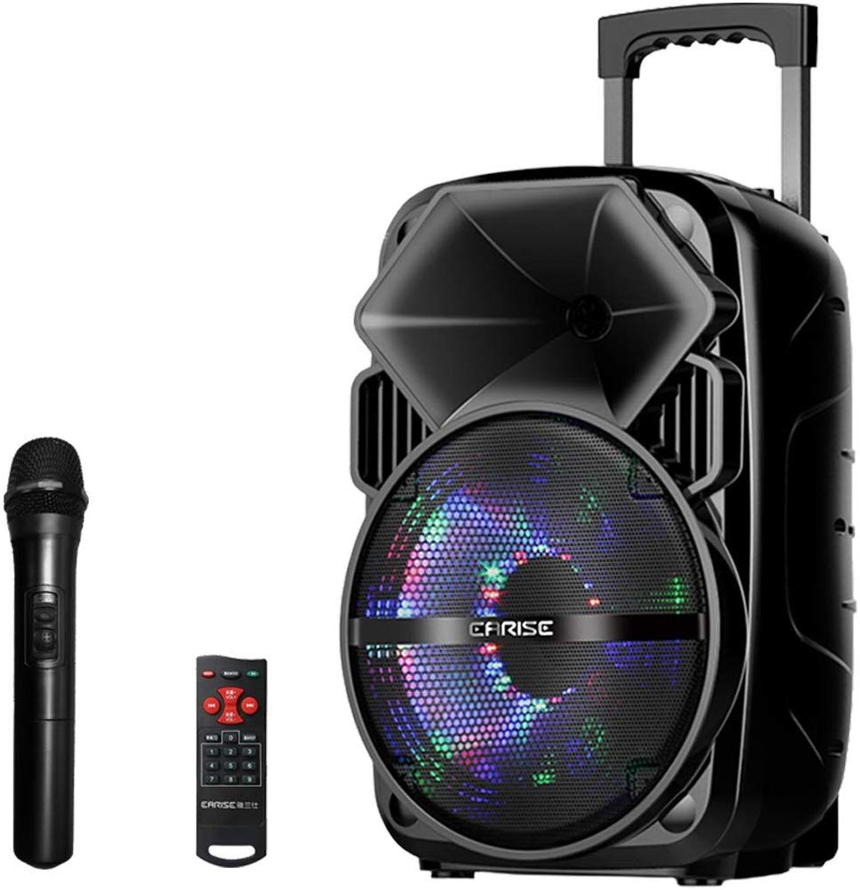 EARISE Bluetooth PA Speaker System with Wireless Microphone, Portable Outdoor Karaoke Machine - Fun Wireless Speaker for Party