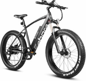 Eahora 500W 4.0 Fat Tire Electric Bike
